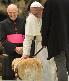 Pope Francis blesses guide dog