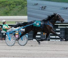 Showing she's all the way back from a freakish injury, Manhattan Miss blazed home in a stake-record 1:54.4 in Friday's $100,000 Pennsylvania S&hellip