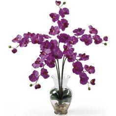Phalaenopsis Liquid Illusion Silk Flower Arrangement ($125) ❤ liked on Polyvore featuring home, home decor, floral decor, faux floral arrangement, silk floral, floral arrangement and floral home decor