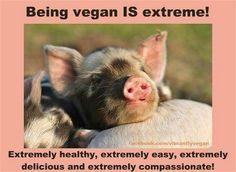 Being vegan