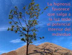 Hipnosis Ericksoniana. Anna Flores