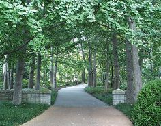 Driveways and entrances - www.myLusciousLife.com - English woodlands