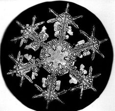 The Snowflake Man of Vermont. Great biographical information and links to the photos in the public domain.