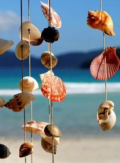 Beach Craft: these would be easy to make, just drill a tiny hole and string together.