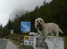 Slovenia 2013: Allmost on top of the world