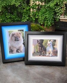 """Frame a favorite photo with an ombre photo mat using this easy technique from """"The Martha Stewart Show."""""""