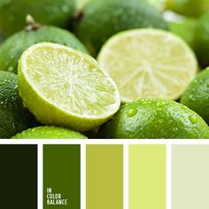 Fresh and invigorating color composition as a short summer shower, after which the sun is shining brightly again. Solid range is good to create original monochrome interior. Shades of green and lemon yellow closer to nature and filled with the light of the room. Therefore, these paints look great in non-solar rooms.