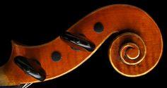 Violin Neck Scroll