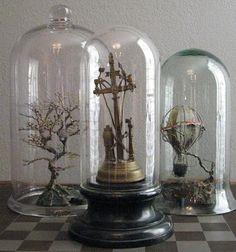 beautiful cloche display