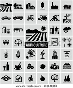 Find Agriculture Icons stock images in HD and millions of other royalty-free stock photos, illustrations and vectors in the Shutterstock collection. Agriculture Pictures, Modern Agriculture, Agriculture Logo, Agriculture Business, Agriculture Machine, Agriculture Industry, Crop Farming, Cattle Farming, Icon Design