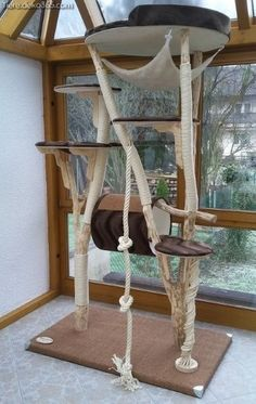 KatzentRäume – Katzenbaum – Der besondere Naturkratzbaum aus Echtholz KatzentRäume – Cat Tree – L& à chat naturel en bois véritable - Diy Cat Tree, Wooden Cat Tree, Wood Cat, Cat Towers, Cat Shelves, Cat Playground, Cat Enclosure, Cat Room, Cat Condo