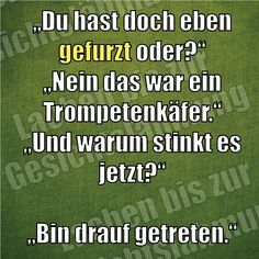 :-D /Google-Suche Me Quotes, Funny Quotes, Lolsotrue, Think Big, Keep Smiling, My Crazy, I Laughed, Haha, Jokes