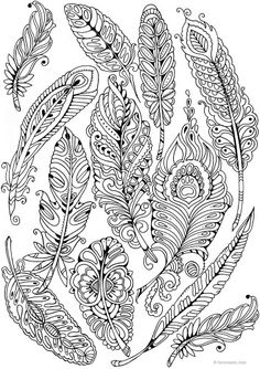 Feathers coloring page