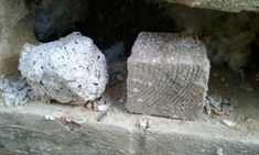 Blocked cavities bridging damp proof course and soaking the cavity wall insulation.results, the internal walls get cold and suffer with mould. Cavity Wall Insulation, Cavities, Walls, Homes, Cold, Shape, Building, Houses, Buildings