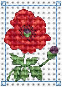 Amanda Gregory cross-stitch design: June poppy free cross stitch chart 1 of 3 Free Cross Stitch Charts, Cross Stitch Freebies, Cross Stitch Pillow, Cross Stitching, Cross Stitch Embroidery, Embroidery Patterns, Cross Stitch Designs, Cross Stitch Patterns, Rug Hooking Patterns