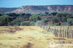 Dingo fence, outback Qld