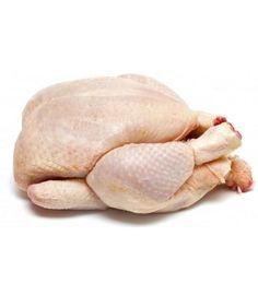 Ayam Potong Broiler