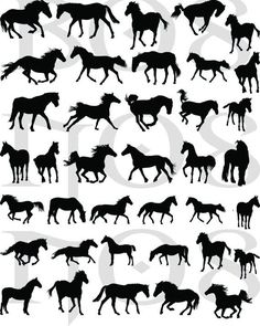 38 DECALS Black HORSE SILHOUETTES  Nail Wraps Nail by NorthofSalem, $4.99: