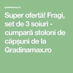 Super ofertă! Fragi, set de 3 soiuri - cumpară stoloni de căpșuni de la Gradinamax.ro