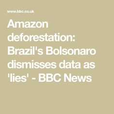 The Brazilian president accuses the national space agency of exaggerating the scale of deforestation. Academy Of Sciences, Research Institute, Image Caption, Uk News, Global Warming, Amazon, Amazons, Riding Habit