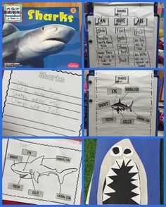 Sharks!  Shark lesson plans for research, writing, labeling and art!