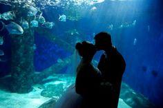 Virginia aquarium wedding
