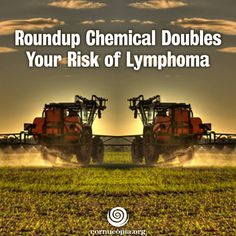 "In case you missed it: A major new review finds this ""safe"" weed killer is anything but harmless. More here: http://www.cornucopia.org/2014/06/roundup-chemical-doubles-risk-lymphoma #roundup #humanhealth #chemicals #contamination"