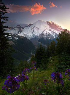 """coiour-my-world: """"The Valley Below ~ by Matt Meisenheimer """""""