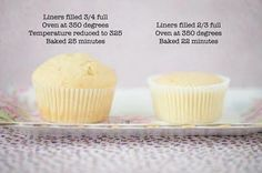 Cupcakes! Did you know this? I didn't!.
