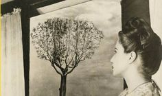 "Tercera Muestra de Arte: ""Grete Stern, de Berlín a Villa Sarmiento"""