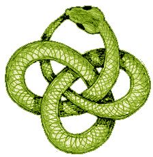 1000 images about new tat ideas on pinterest snakes for Snake eating itself tattoo