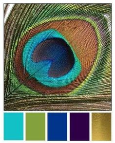 The first 3 colors on the left (generally speaking...) Peacock Color Scheme, Peacock Colors, Colour Schemes, Color Combinations, Colour Palettes, Peacock Wedding Colors, Purple Peacock, Wedding Colours, Colour Chart