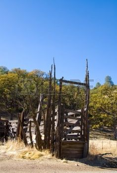 Picture of Rustic cattle chute with clear blue sky stock photo, images and stock photography. Cattle Corrals, Texas Cowboys, Gods Glory, Clear Blue Sky, Cowboy Art, The Ranch, Westerns, Stock Photos, Rustic
