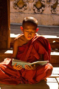 Novice monk reading, Bagayar Monastery, Inwa, Burma (Myanmar) | Blaine Harrington Photography Buddhist Texts, Buddhist Monk, Buddhist Art, Mandalay, Mary Ellis, Body Painting Festival, Thai Monk, Brunei, Figure Drawing Reference