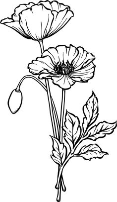 Beccy's Place: April 2011 - Beccy's Place: April 2011 Beccy's Place: April 2011 Flower Sketches, Art Sketches, Fabric Painting, Painting & Drawing, Watercolor Flowers, Watercolor Art, Anzac Poppy, Digi Stamps, Colouring Pages