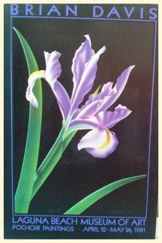 BRIAN DAVIS - IRIS Laguna Beach Museum of Art 1981 36X24 POSTER PRINT  #Realism