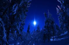 Winter night in Ylläs. photo by Michael Ayling.