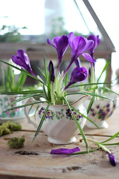 I love the flower in a teacup idea- for real or fake flowers.