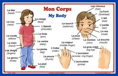 Amazon.com : French Language School Poster: French Words About Parts of the Body with English Translation - Classroom Chart : Office Products