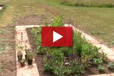 Gardening Tips, Urban Gardening, Garden Inspiration, Natural Health, Homesteading, Stepping Stones, Planters, Outdoor Decor, Nature