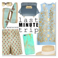"""Last Minute Trip"" by rosewoodcases ❤ liked on Polyvore featuring ZAC Zac Posen, Miu Miu, René Caovilla, rag & bone and Wildfox"