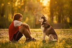 dog photoshoot11