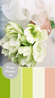 wedding palate colors for august | Wedding Color Palettes #6: Green, Ivory, Pink