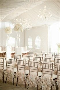 Neat Chairs for Wedding