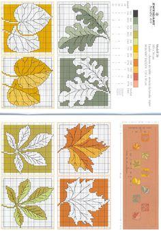 Autumn Leaves 2/2