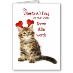 Funny Kitten Valentine Greeting Cards http://www.zazzle.com/funny_kitten_valentine_greeting_cards-137726956080926690?rf=238194283948490074&tc=pfz #funny #humor #valentinesday #valentine #happyvalentinesday #love #chocolate #custom #personalized #cat #greetingcards #zazzle