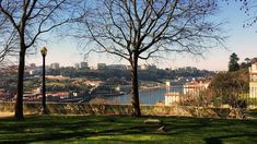 Are you traveling on a budget but still want to enjoy the best the city has to offer? Check out this list of free things to do in Porto and get going! Lazy, Porto Portugal, Palace Garden, Douro, Free Things To Do, Romantic Getaways, Prado, Beautiful Buildings, Heritage Site