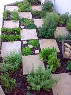 Stone tiles in the garden create an easy walkway.   41 Cheap And Easy Backyard DIYs You Must Do This Summer #gardenideascheap