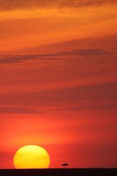 African Sunset by serhatdemiroglu