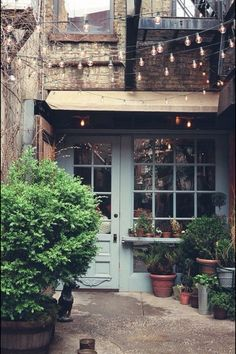 I like this hidden treasure with the cute lights, awesome doors and beautiful plants!